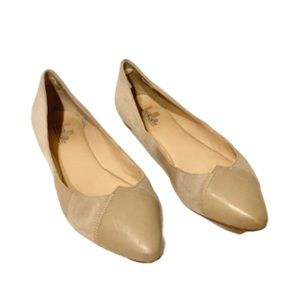 Belle by Sigerson Morrison Tan Nude pointed flats